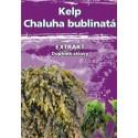 Naturgreen Kelp Chaluha bublinatá organický jód 120 cps. Naturgreen