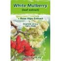 Naturgreen WhiteMulberry +Nature'sHerbs 120 veganských tbl.