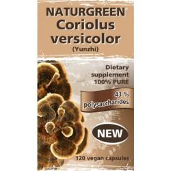 Naturgreen Coriolus versicolor (outkovka pestrá) - vegan kapsle 120ks