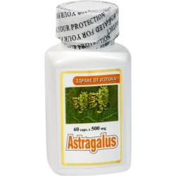 Kozinec blanitý - Astragalus 60 kapslí
