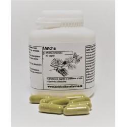 Matcha tea- bylinné kapsle/100 tobolek