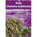 Naturgreen Kelp Chaluha bublinatá organický jód 120 cps.