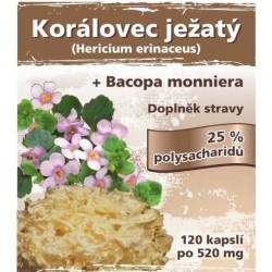 Naturgreen Korálovec ježatý extrakt 120 veganských tbl.