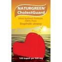 Naturgreen® CholestGuard- 120 vegan kapslí po 520 mg. Naturgreen