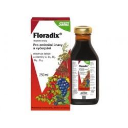 Salus Floradix 250 ml - bezlepkový železo +